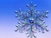 snowflake-1152.jpg__800x600_q85_crop
